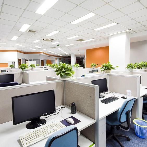 Картинка с примером убранного офисного помещения